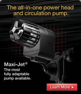 Maxi-Jet: the most fully adaptable pump available.