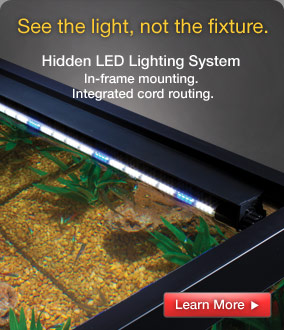 Hidden LED Lighting System: in-frame mounting and integrated cord routing.