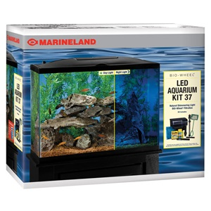 LED aquarium kits are a simple solution for a small saltwater tank
