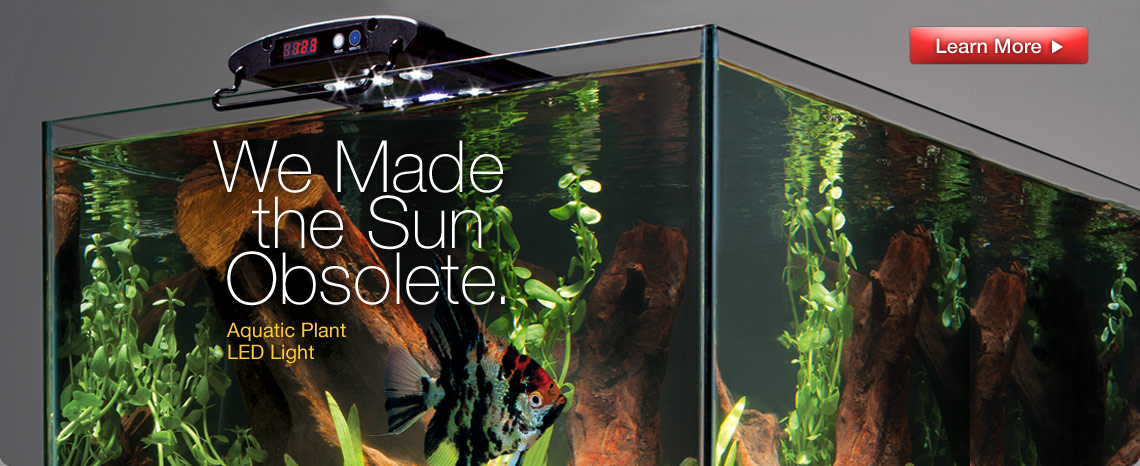 Aquatic Plant LED